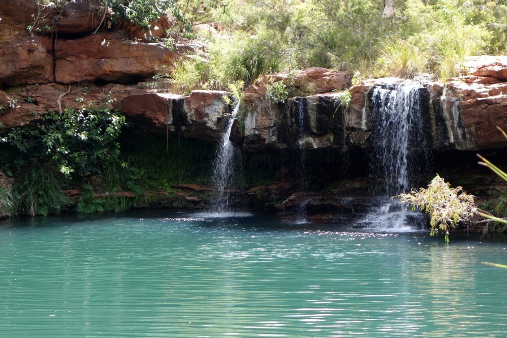 Fern pool - Karijini National Park